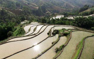 mùa nước đổ- Hoàng Su Phì
